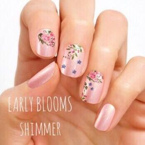 Accessories - Color Street Nail Strips - Early Blooms